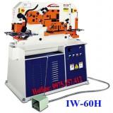 Máy đột cắt liên hợp đa năng IW-60H, đột cắt chấn liên hợp Sunrise 60 tấn, máy đột lỗ thủy lực 7.5HP